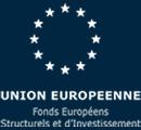 logo Europe - FESI